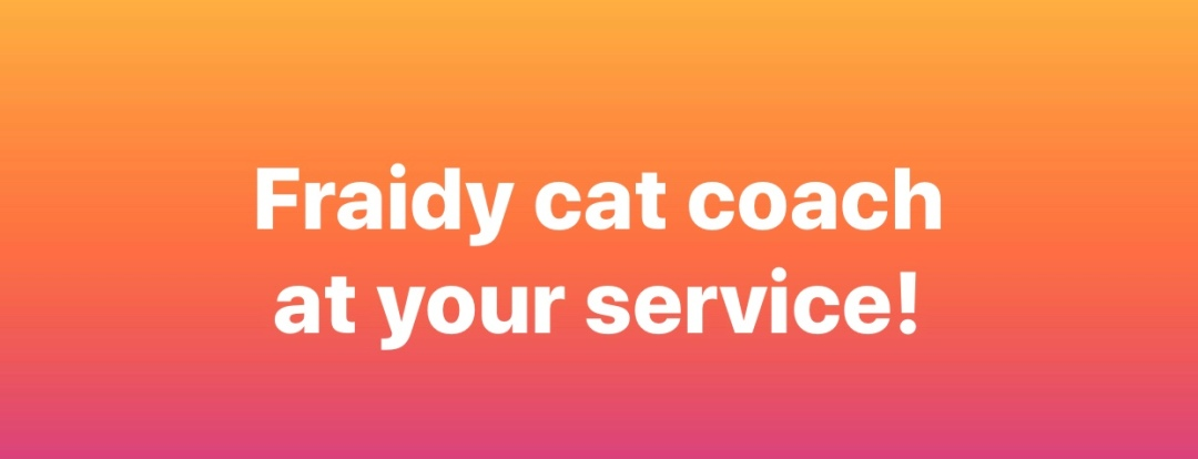 Fraidy cat coach