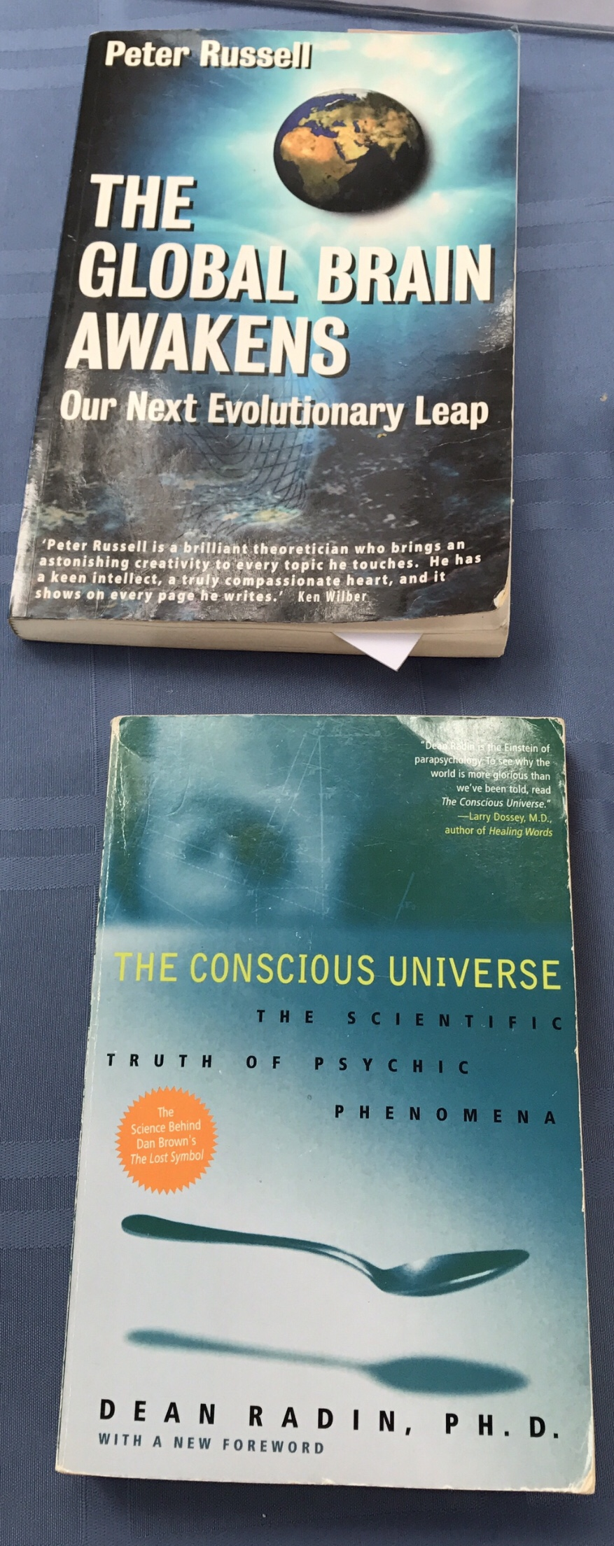 The Global Brain Awakens and The Conscious Universe