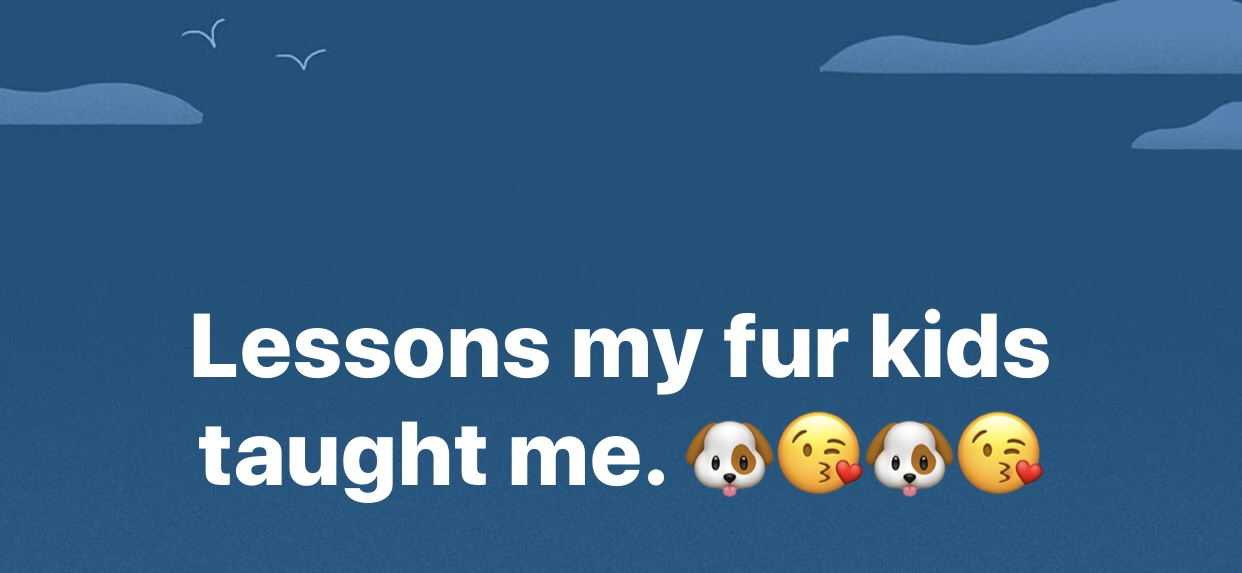 Lessons my fur kids taught me